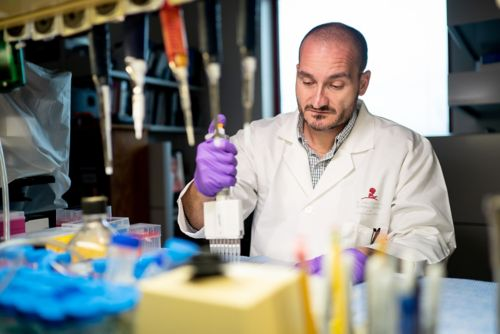 A scientist pipetting in a lab