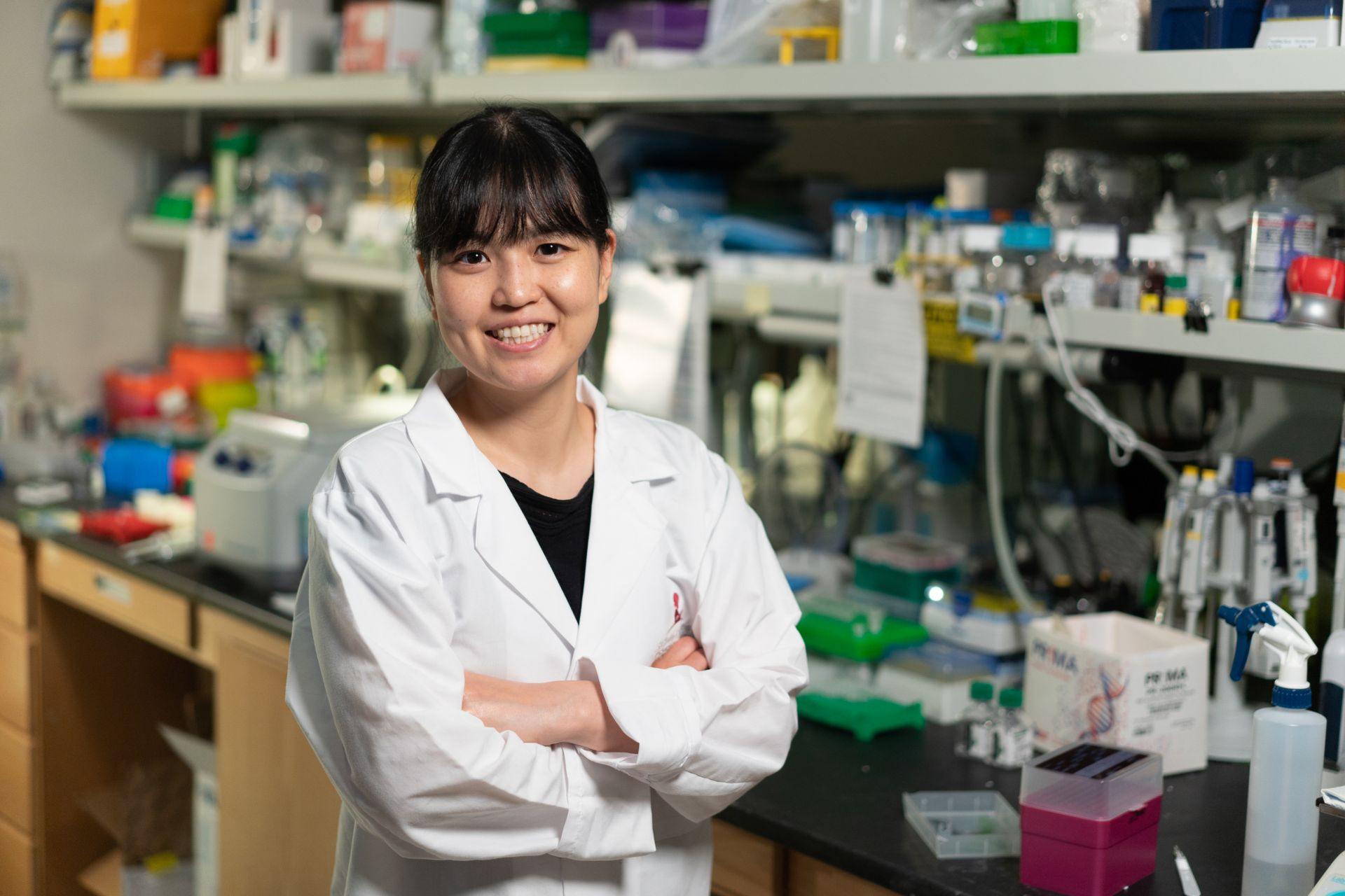 Rina Nishii, PhD
