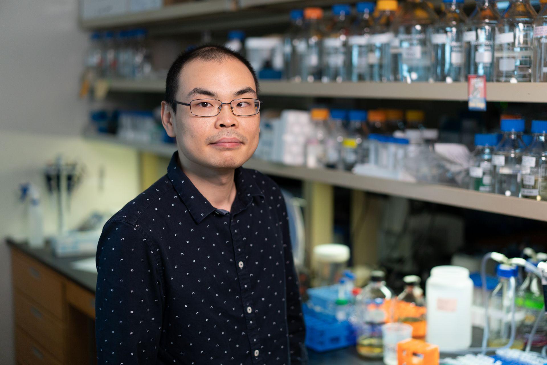 Hongtu Zhao, PhD