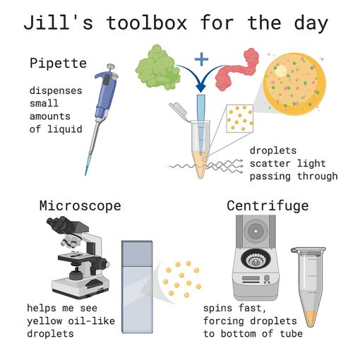 """graphic of """"toolbox for the day"""""""