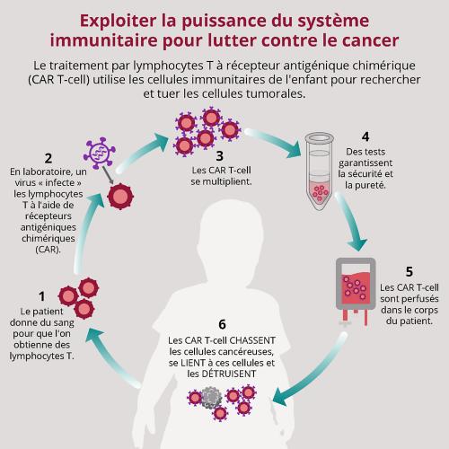 Le traitement par les lymphocytesT porteurs d'un récepteur antigénique chimérique, ou traitement par cellules CAR-T, est un traitement associé au syndrome de libération de cytokines, également appelé «tempête de cytokines». Les médecins responsables des traitements par cellules CAR-T réinjectent au patient ses propres lymphocytesT modifiés afin qu'ils reconnaissent et attaquent les cellules cancéreuses.