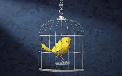 SMARCB1: Genetic 'canary in a coal mine' sparks research
