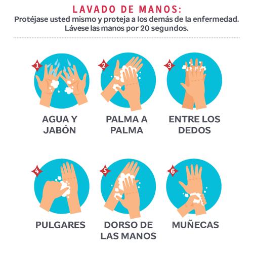 Lavado de manos: Protéjase a sí mismo y a los demás de la enfermedad. Lávese durante 20 segundos. 1) Agua y jabón 2) De palma a palma 3) Entre los dedos 4) Los pulgares 5) El dorso de las manos 6) Las muñecas