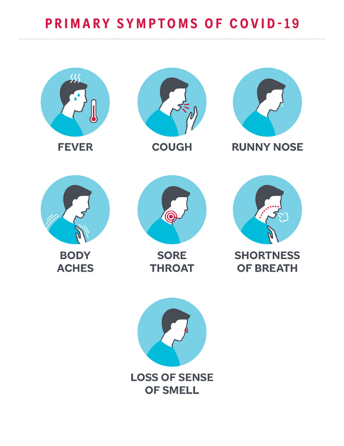 Primary symptoms of COVID-19 include fever, cough, runny nose, shortness of breath, and sore throat.