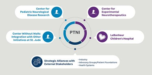 Alliances of the PTNI program