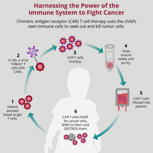 A diagram explaining CAR T-Cell therapy to help against a cytokine storm.