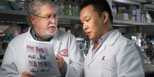 Targeted antibiotics may help protect bacterial good guys in the gut