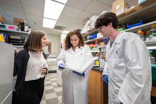 Clements Lab