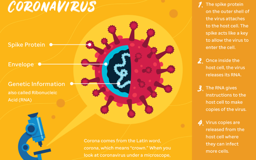 Teens: Your Coronavirus Questions Answered