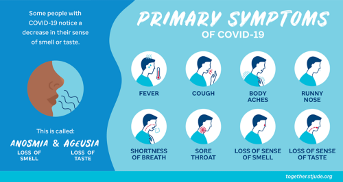 Primary symptoms of coronavirus disease include fever, cough, body aches, runny nose, shortness of breath, and sore throat. Some people with COVID-19 notice a decrease in their sense of smell or taste.