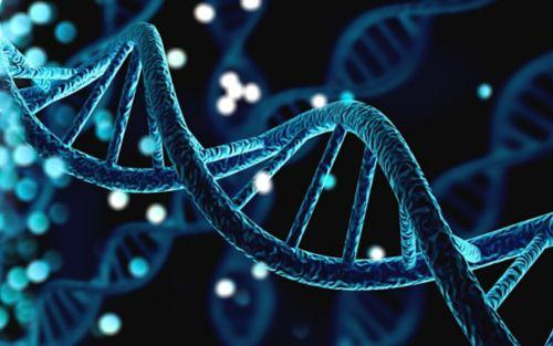 Whole Genome Data