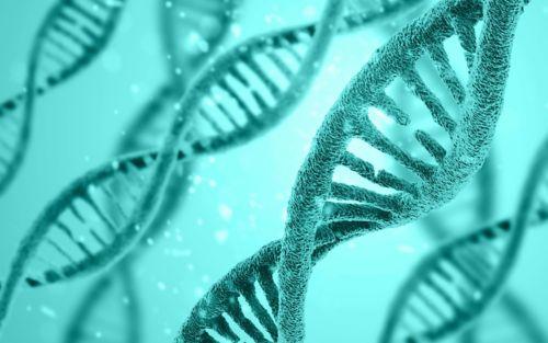 Illustration of strands of DNA