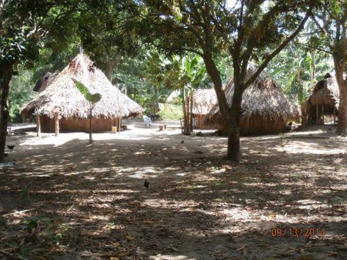 Hut in village