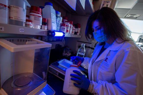 Kanneganti Lab