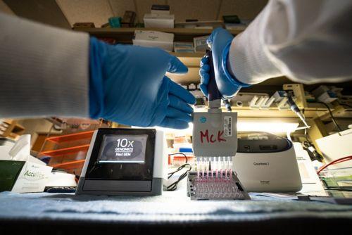 mckinnon lab