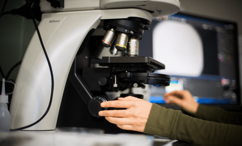 A pathologist works a microscope to look at tissue histology to identify a specific type of pediatric cancer.