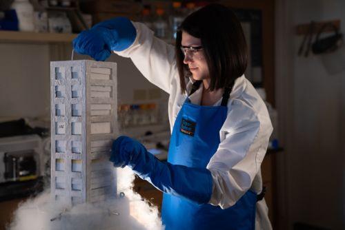 Nichols Lab