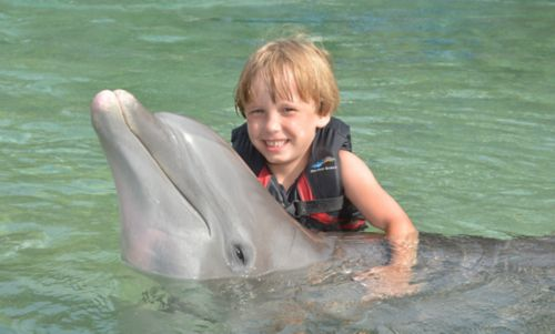Pediatric cancer patient swims with a dolphin