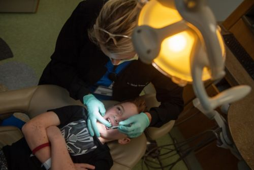 Regular dental check-ups every six months and regular imaging of the teeth, roots, and jaw will help screen for dental problems.