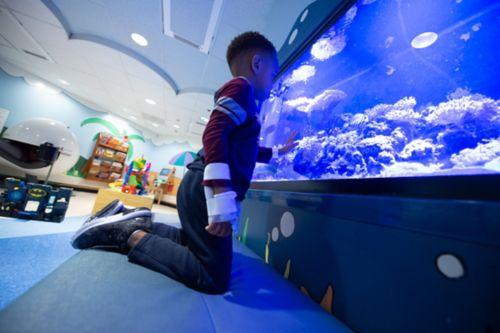 """""""扫描焦虑症"""" 是一个非正式术语,用于描述许多患者和家属在等待结果时所面临的担忧。在这张照片中,一名儿童癌症患者在诊所候诊区观察鱼缸里的鱼。"""