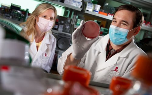 Two people in white coats looking at a Petri dish