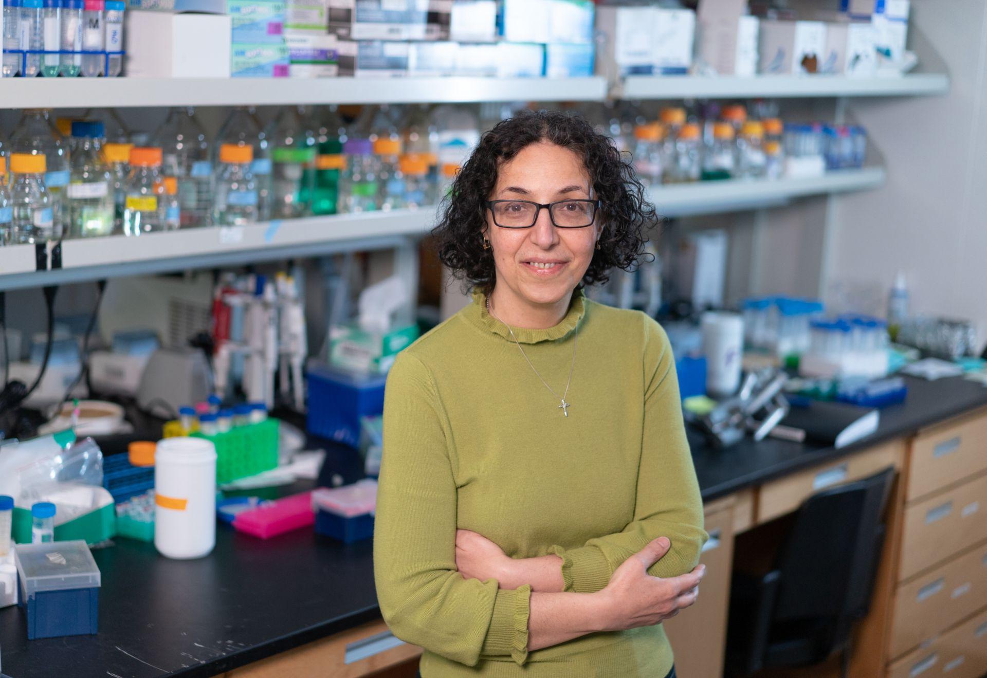 Nafiseh Sabri, PhD