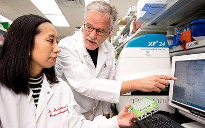 Heme synthesis linked with acute myeloid leukemia