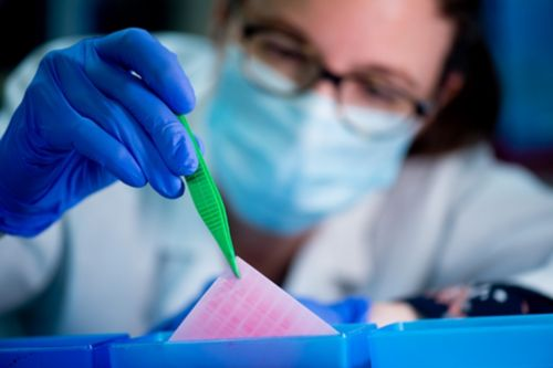 Tumor Cell Biology