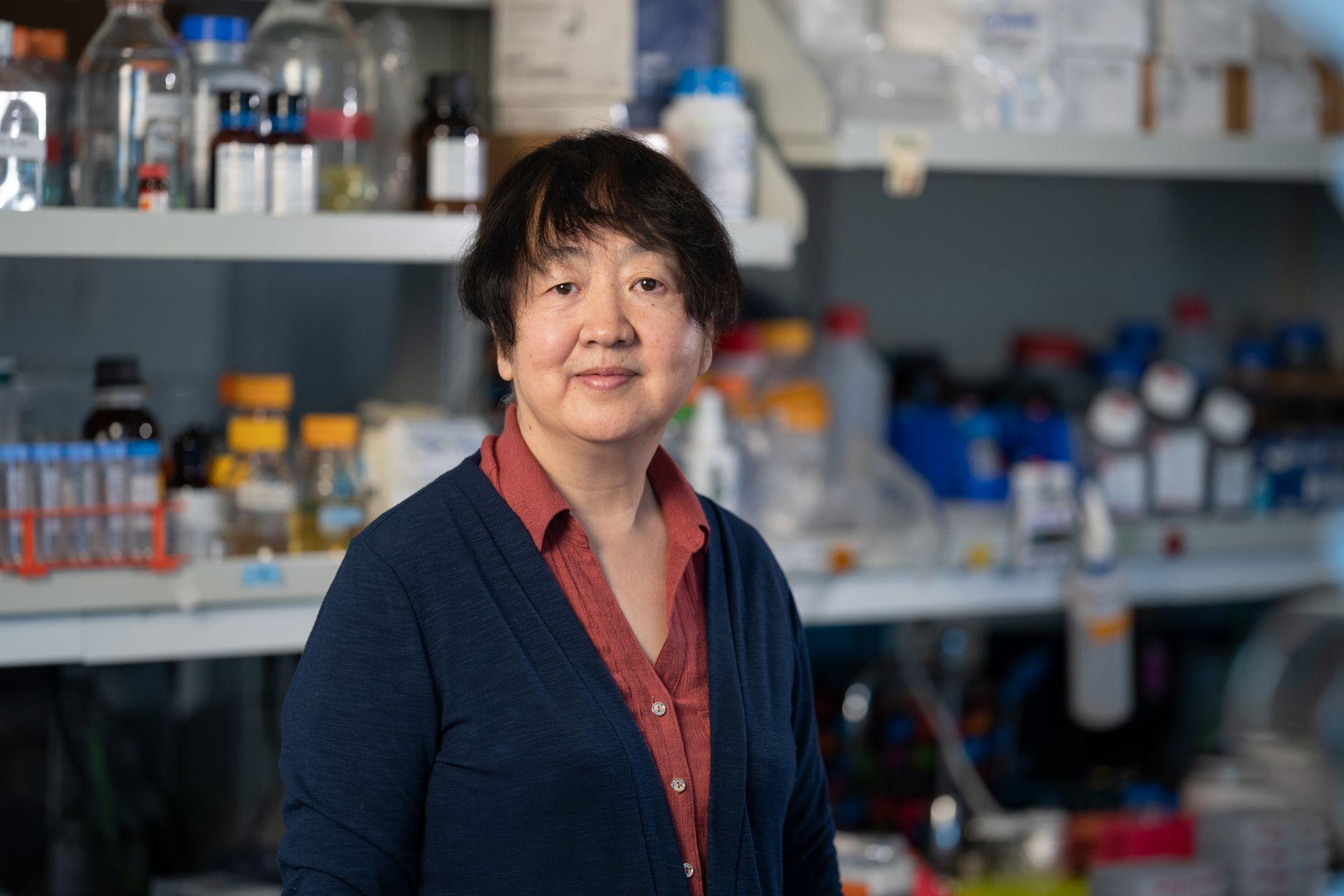 Jing Wu, MD