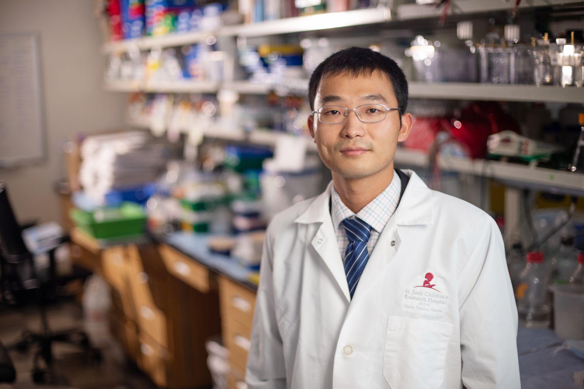 Shu Yang, PhD